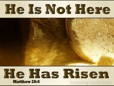 Matthew 28:6 He Is Not Here He Is Risen (beige)